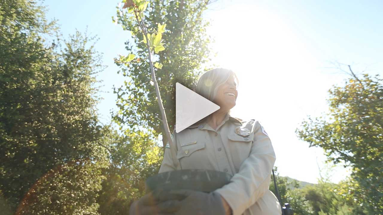 Watch Planting a Tree with Ranger Heidi
