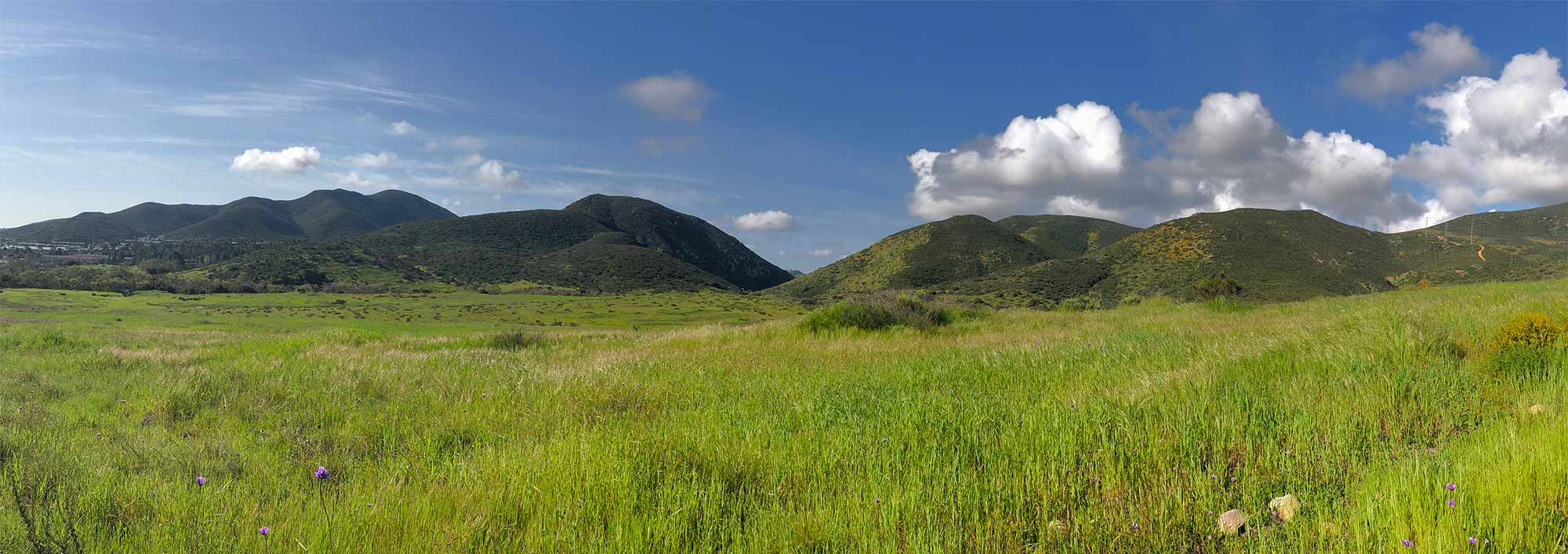 A view of Mission Trails Regional Park